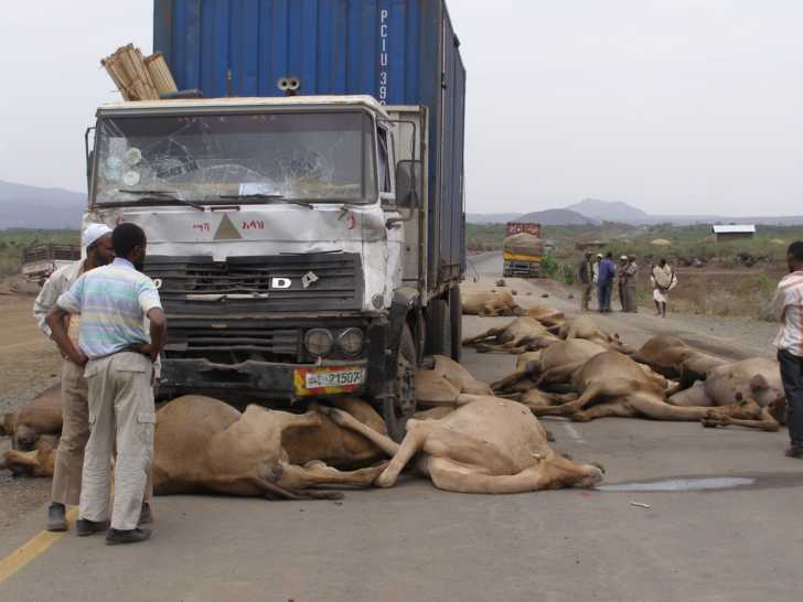 Image result for Ethiopian Road accidents